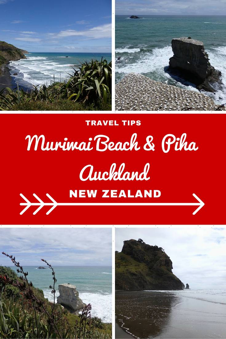New Zealand Travel Inspiration - Looking for things to do in Auckland City then why not visit the super popular Auckland West Coast beaches including Muriwai Beach with it's Gannet Colony and Piha Beach which is perfect for surfing!  These two destinations should be on your New Zealand Bucket List.  Click on the link to see more photos and travel tips for Auckland, New Zealand.