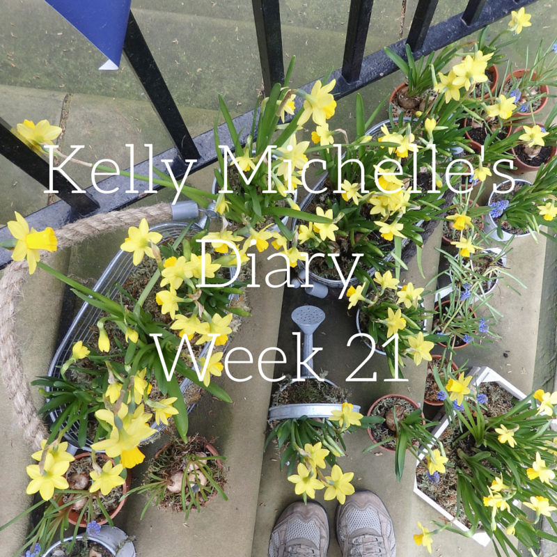 Copy of Kelly Michelle's Diary Week 21
