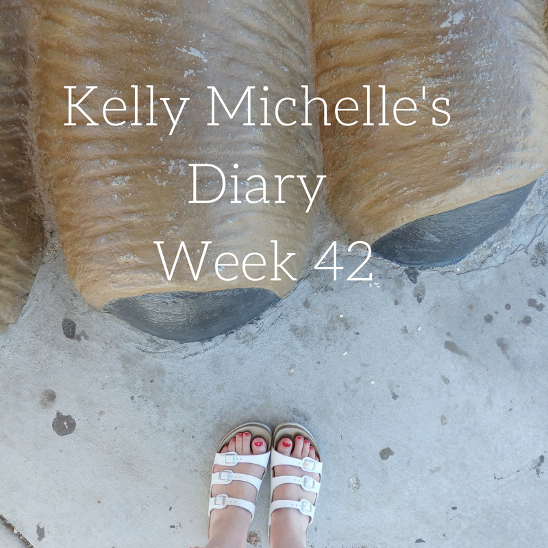 Kelly Michelle's Diary Week 42, 2016