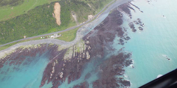 Kaikoura, the Earthquake and How You Can Donate