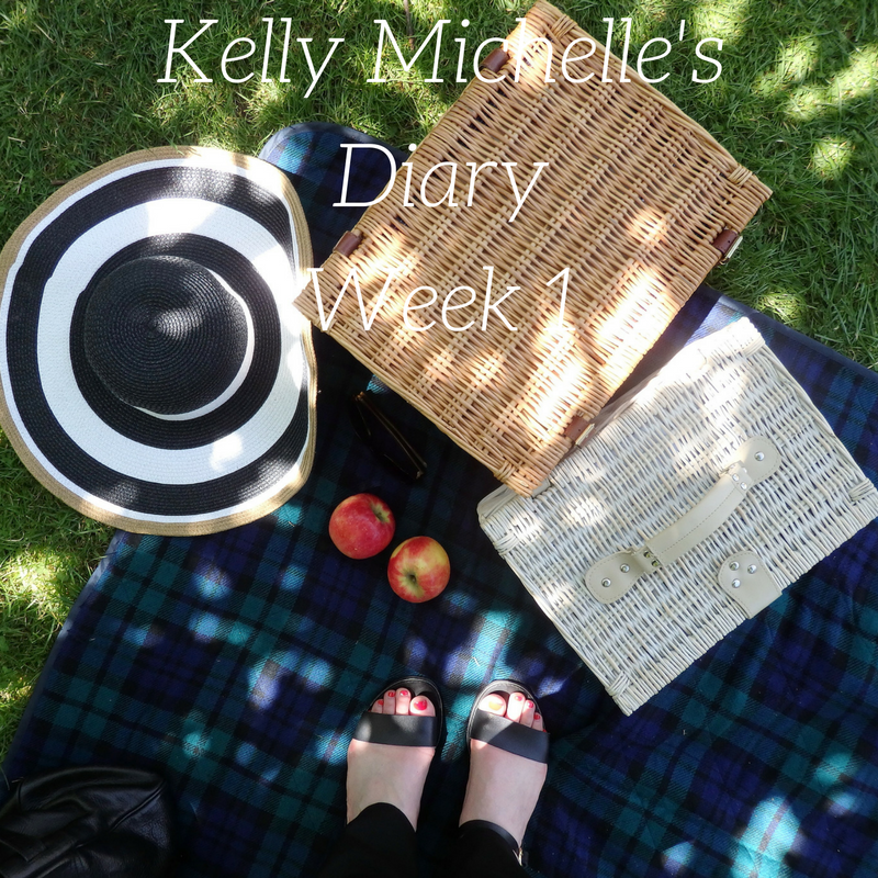 Kelly Michelle's Diary Week 1, 2017