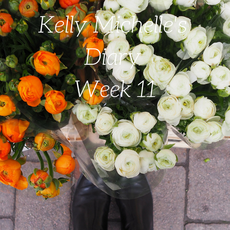 Kelly Michelle's Diary Week 11, 2017