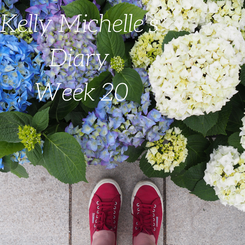 Kelly Michelle's Diary Week 20, 2017