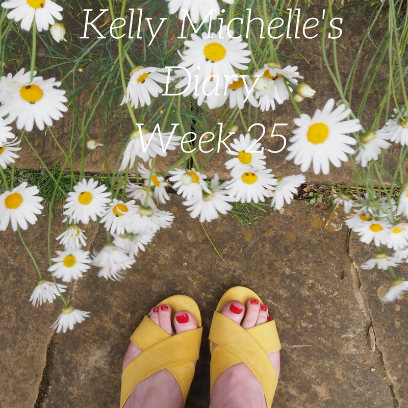 Kelly Michelle's Diary Week 25, 2017