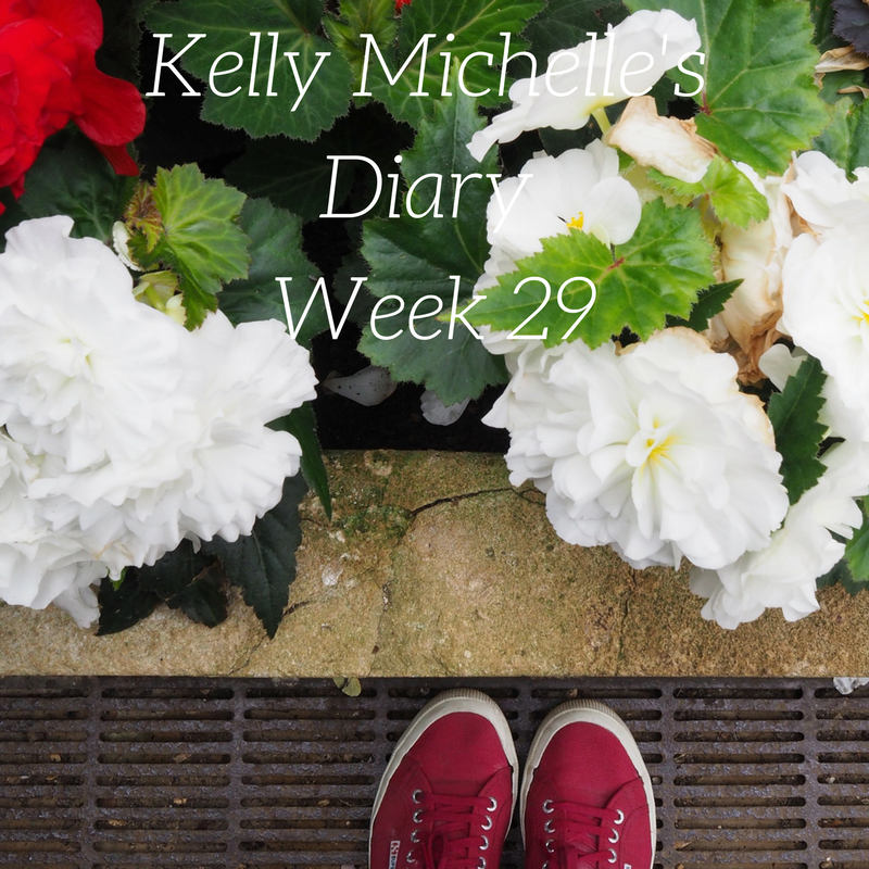 Kelly Michelle's Diary Week 29, 2017