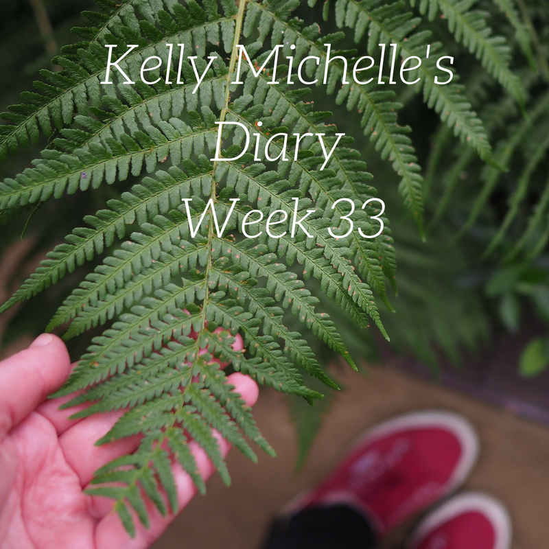 Kelly Michelle's Diary Week 33, 2017