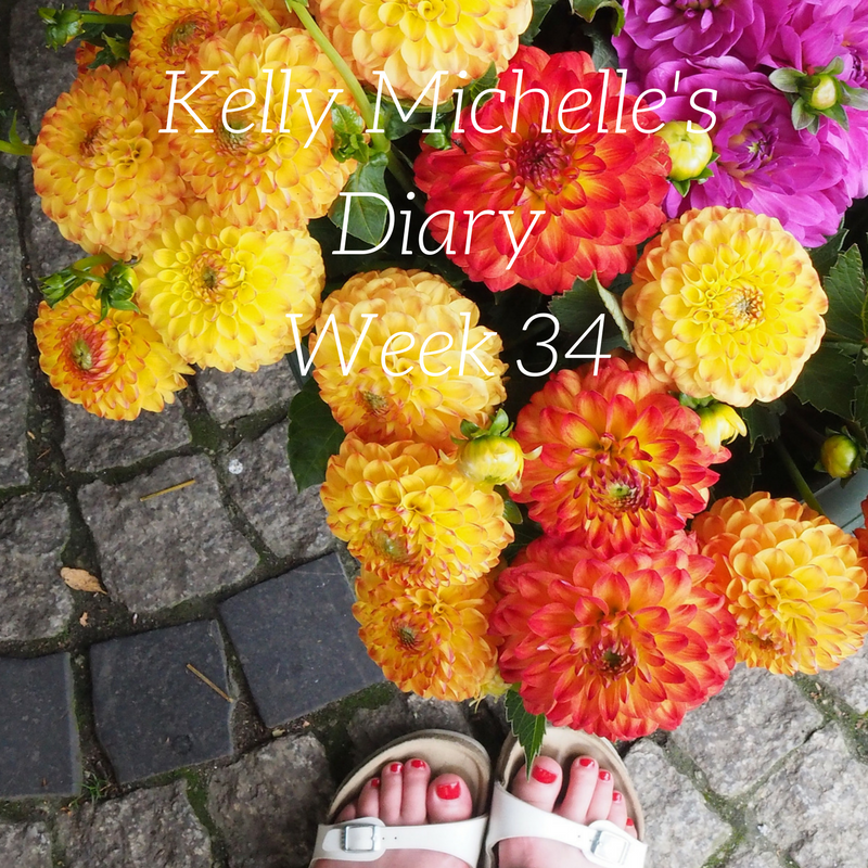 Kelly Michelle's Diary Week 34, 2017