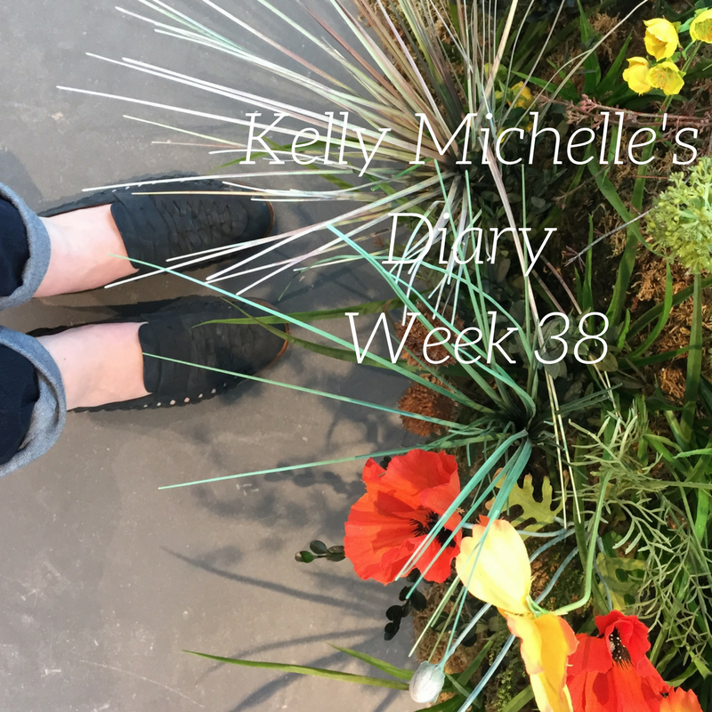 Kelly Michelle's Diary Week 38, 2017
