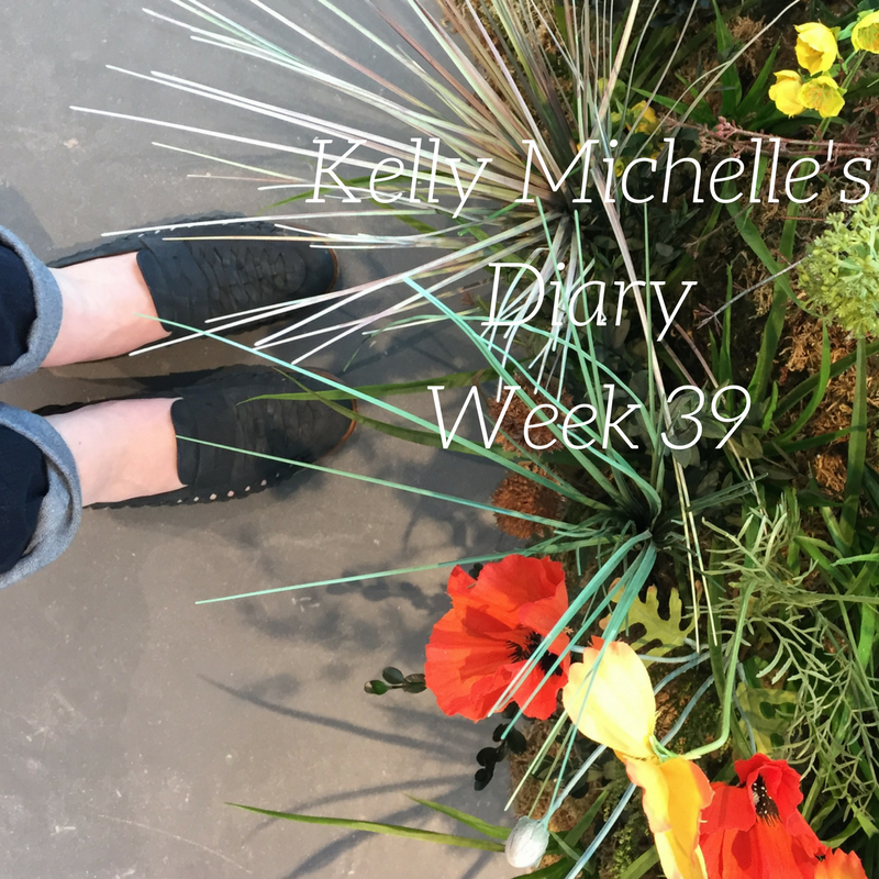Kelly Michelle's Diary Week 39, 2017