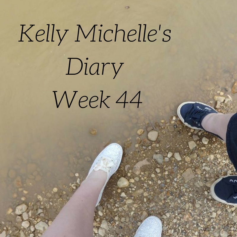Kelly Michelle's Diary Week 44, 2017