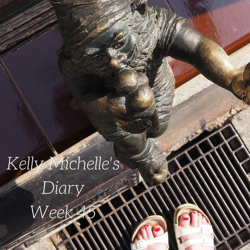 Kelly Michelle's Diary Week 45, 2017