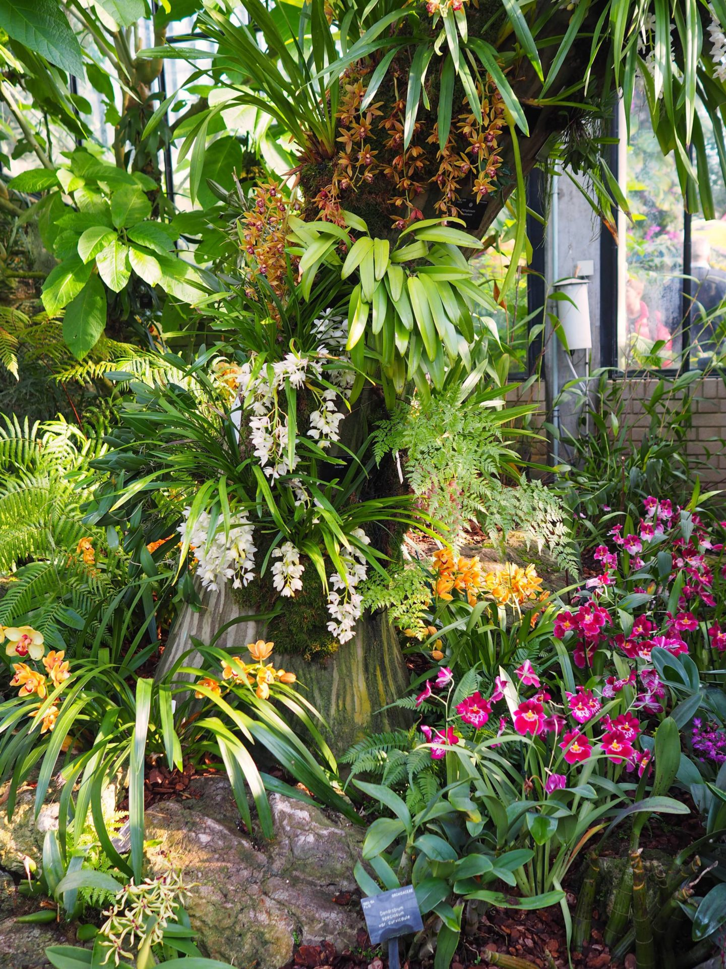 Beautiful british gardens visiting kew gardens london the orchid england travel inspiration beautiful british gardens visiting kew gardens london the orchid sisterspd